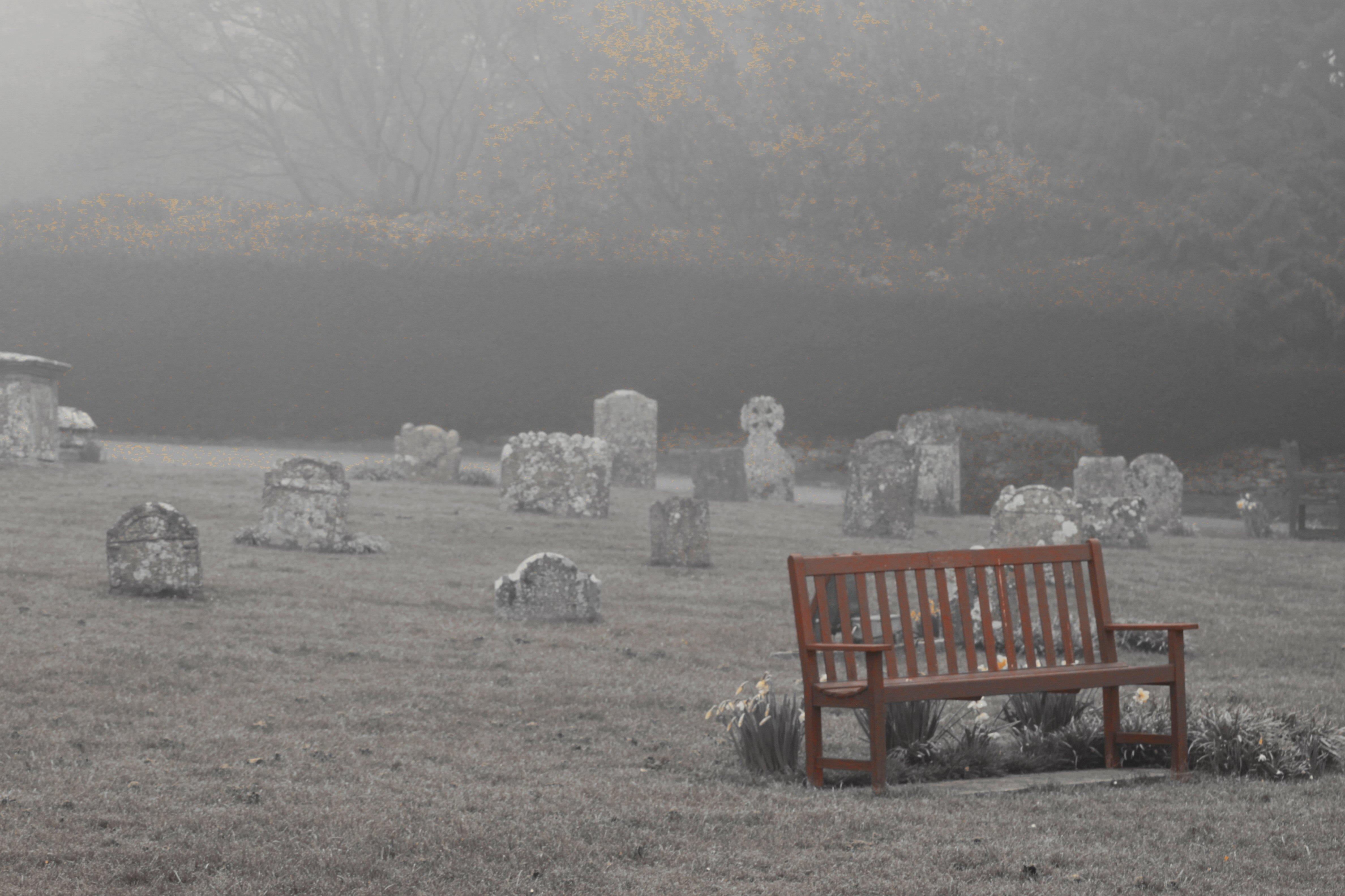 gravefog